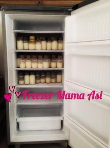 Freezer Asi 5 rak | Sewa Freezer Asi | Freezer Mama Asi
